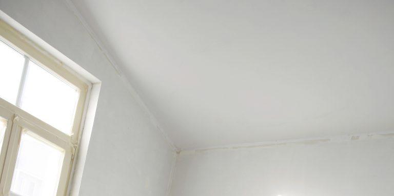 C mo pintar el techo bricopared beissier - Como pintar techos ...
