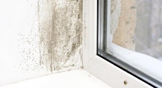 Aplicar Lisomat Anticondensación en torno a las ventanas