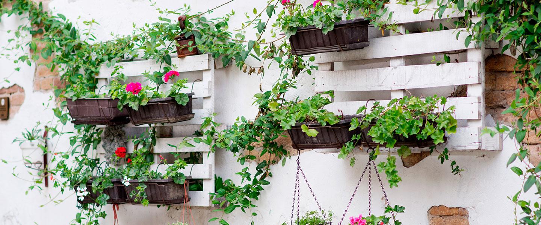 Convertir un palé en un huerto vertical